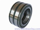 Double row full complement cylindrical roller bearing|Double row full complement cylindrical roller bearingManufacturer